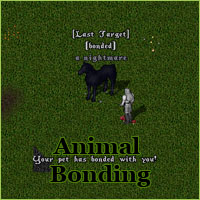 Ultima Online Pet Bonding