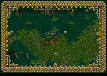 Ultima Online Alligator