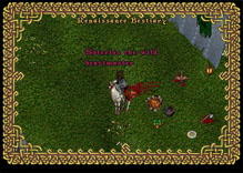 Ultima Online BeastTamer