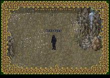 Ultima Online Betrayer