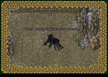Ultima Online BlackSolenInfiltratorWarrior