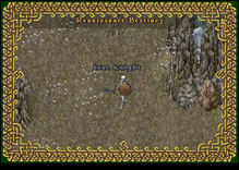 Ultima Online BoneKnight