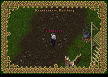 Ultima Online HumanBrigand