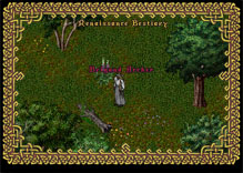 Ultima Online BrigandArcher
