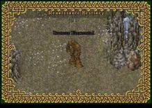 Ultima Online BronzeElemental