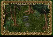 Ultima Online Cougar