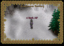 Ultima Online DarkElfFencer