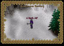 Ultima Online DarkElfMacer