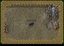 Ultima Online DireWolf
