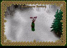 Ultima Online ElfMage