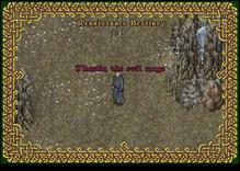 Ultima Online EvilMage