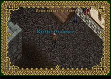 Ultima Online Farmer