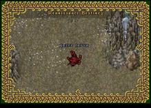 Ultima Online GazerLarva