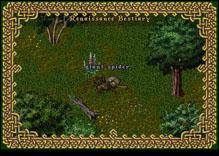 Ultima Online GiantSpider