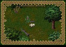 Ultima Online Goat