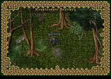 Ultima Online Gorilla