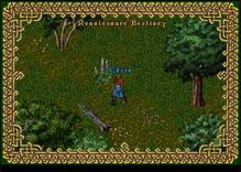 Ultima Online Gypsy