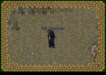Ultima Online Harrower