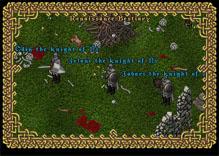 Ultima Online FodderKnight