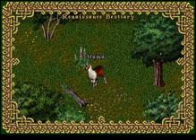 Ultima Online Llama