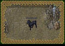 Ultima Online Nightmare