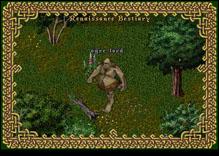 Ultima Online OgreLord