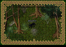 Ultima Online Panther