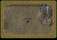 Ultima Online Phoenix
