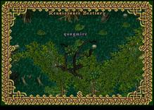 Ultima Online Quagmire