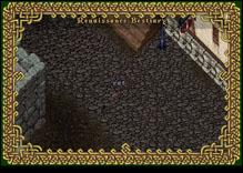 Ultima Online Rat