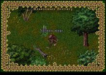 Ultima Online RatmanMage