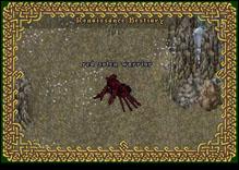 Ultima Online RedSolenWarrior