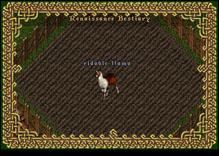 Ultima Online RidableLlama