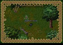 Ultima Online ShadowWisp