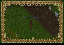 Ultima Online SkeletalMage