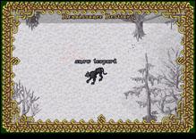 Ultima Online SnowLeopard
