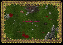 Ultima Online SpectralRabbit