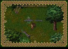 Ultima Online StrongMongbat