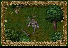 Ultima Online Troll