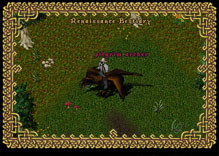 Ultima Online TurkeyArcher
