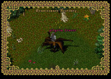 Ultima Online TurkeyFencer
