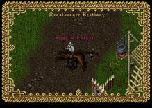 Ultima Online TurkeyKnight