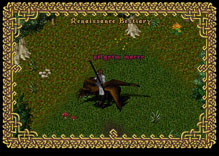Ultima Online TurkeyMacer