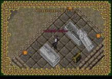 Ultima Online UndeadPirateSailor