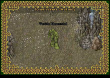 Ultima Online VeriteElemental