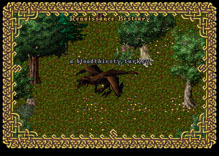 Ultima Online WildTurkey3