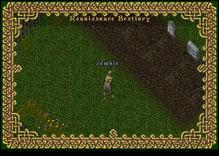 Ultima Online Zombie