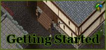 Ultima Online Renaissance Town Crier